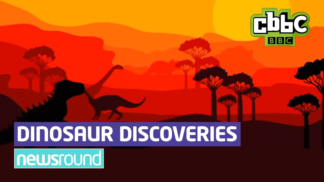 the importance of dinosaur discoveries essay The cloning in plants and animals biology essay new discoveries for scientists since obtaining a sample of medical importance from a dinosaur skeleton is.