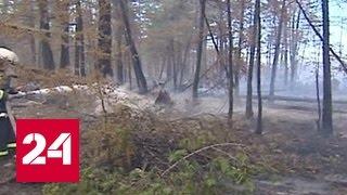 Сухие грозы и ветер могут серьезно увеличить площадь возгораний в Якутии