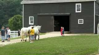 Longstreet Farms