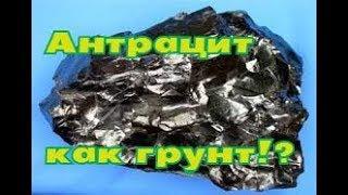 Уголь антрацит как грунт! Какой грунт выбрать для аквариума?