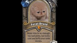 GERMAN FERAL 8.3 BfA M+ & RAID GUIDE & COACHING  (#5 Feral 2.7k iO S3)
