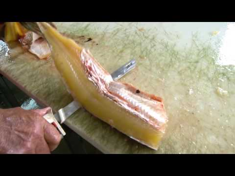 How To Clean A Northern Pike