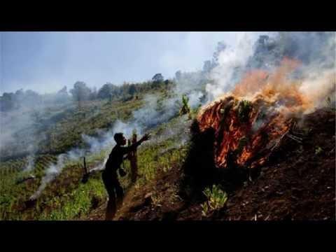 Myanmar army fires on Rohingya villages in Rakhine region