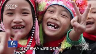 《道德观察(日播版)》 20190920 87个孩子一个妈| CCTV社会与法