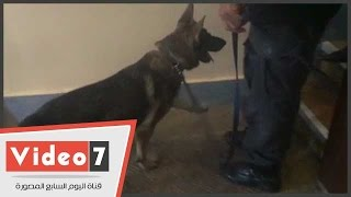 """بالفيديو.. الكلاب البوليسية تمشط مقر انعقاد """"ملتقى دول حوض النيل"""" بالإسكندرية"""