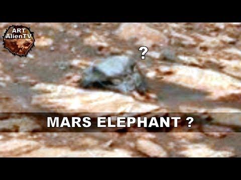 Mars Elephant ? Martian Skull Resembles Mammal - ArtAlienTV