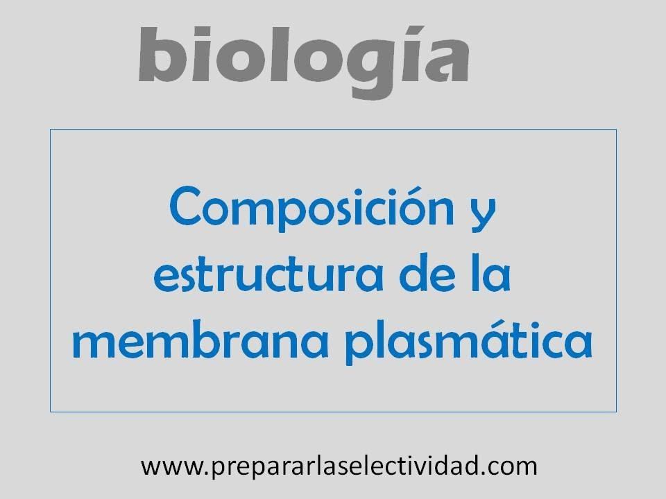 Composición Y Estructura De La Membrana Plasmática
