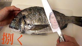 黒鯛さばいて寿司握るホイ!! 【板前】 PDS