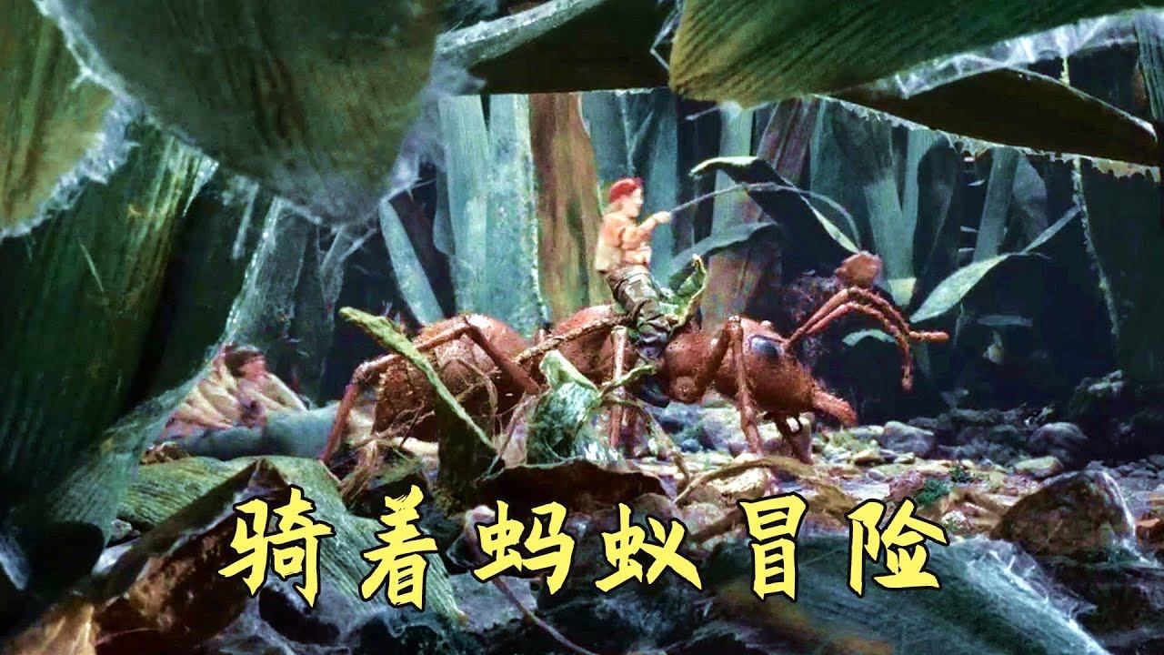 小孩子缩小几千倍,骑着蚂蚁在地上玩耍,奇幻冒险电影