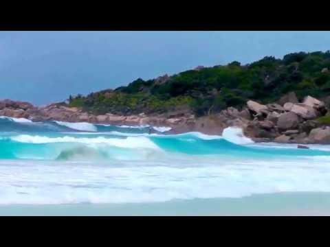 Seychellen - Wo die Palmen wie Unkraut wachsen. Meer und Musik
