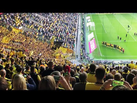 BVB Fans celebrate their team after an emotional season!