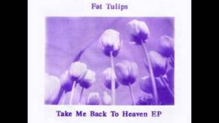 Fat Tulips - Take Me Back To Heaven