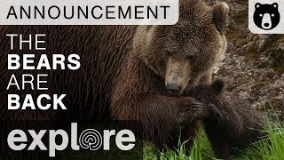 The Bears Are Coming Back! thumbnail