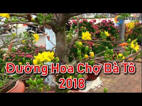 Đường Hoa Chợ Bà Tô Tết 2018 - Du Lịch Bà Rịa Vũng Tàu 2018