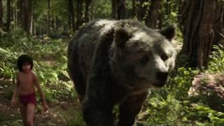 Jungle Jungle Baat Chali Hai full Song by naveen kumar