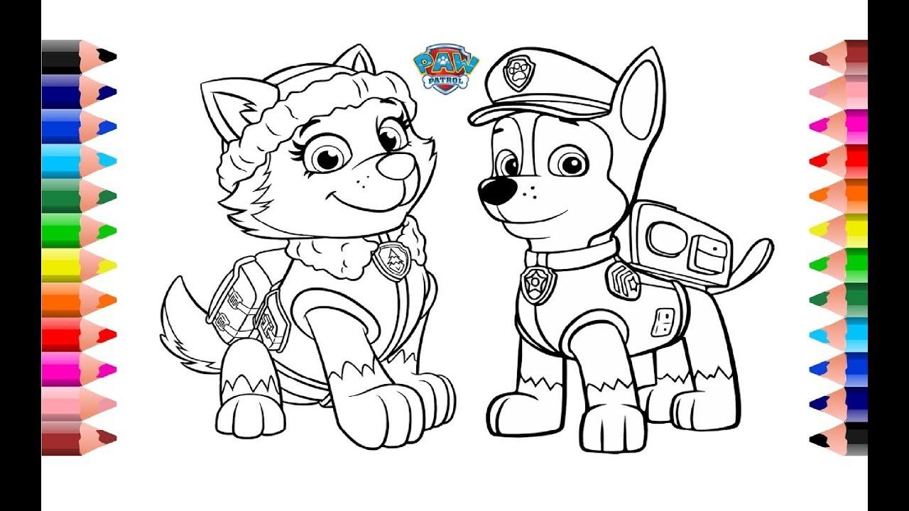 Juego De Colorear Paw Patrol Juego Paw Patrol Coloring
