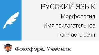Русский язык. Морфология: Имя прилагательное как часть речи. Центр онлайн-обучения «Фоксфорд»
