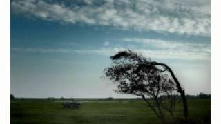 K.I.Z. Rauher Wind