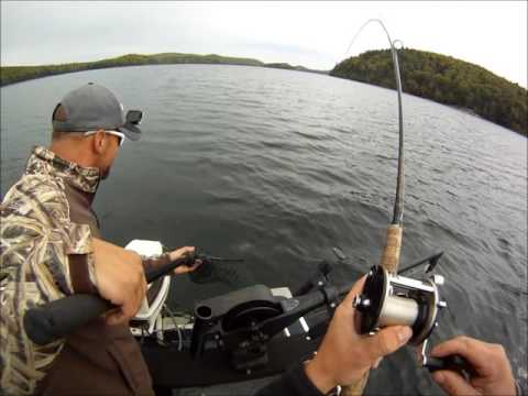 MagFin Outdoors Presents Quabbin Salmon