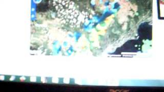 Southern Ontario Storm Prediction from Nov 13, 2011 confirmed nov 14, 2011 Weather Network Data