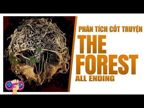 Phân tích cốt truyện: THE FOREST