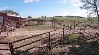 320+- Acre Cattle Farm near Carrollton, Georgia For Sale