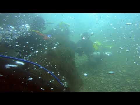 ダイビングの泡が変な動きをしています   リバーダイビングでのワンシーンです