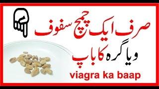 Viagara Ka Baap || Sirf Adha Spoon Aur Mardana Taqat 10 Mardoon Ky Brabar