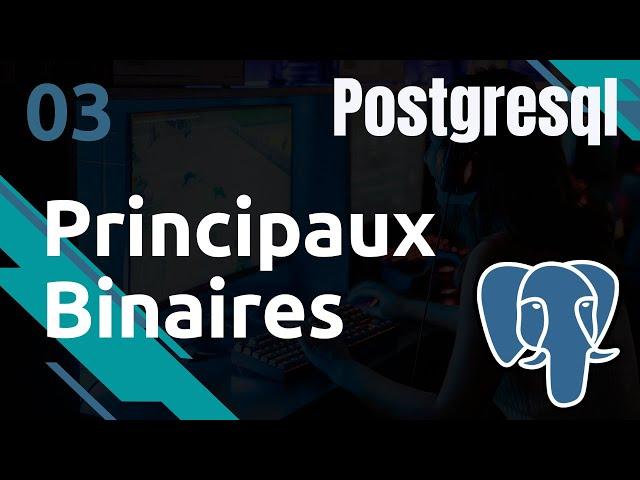 POSTGRESQL - 3. PRINCIPAUX BINAIRES