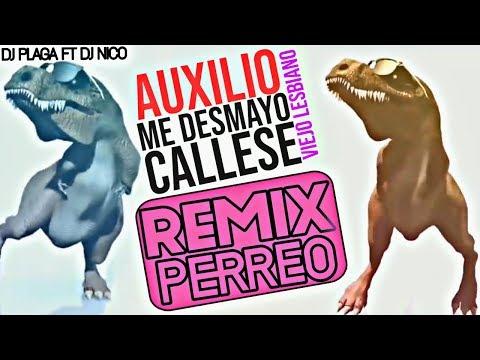 axulio-me-desmayo,-callese-viejo-lesbiano---dj-plaga-ft-dj-ness-(remix-perreo)-*agite-2019*