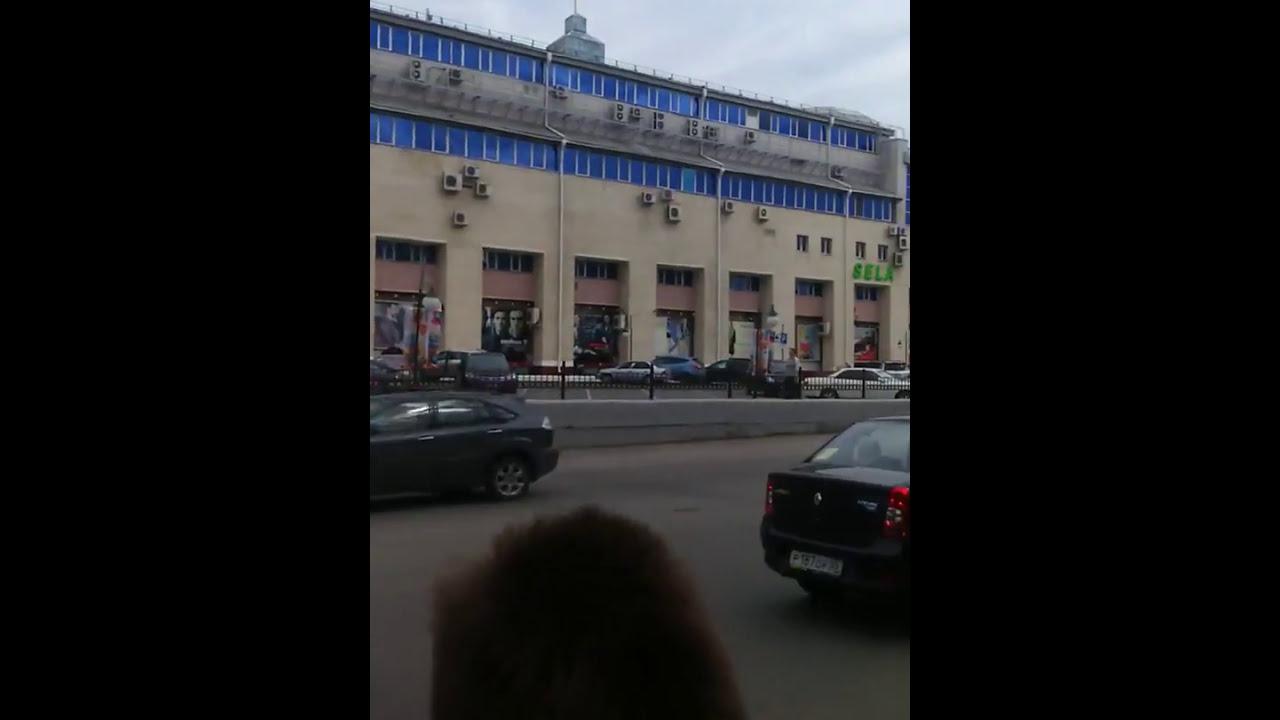 Баран на дороге в центре Омска