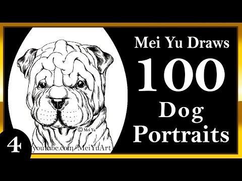 100 Drawings CHALLENGE - Mei Yu Draws 100 Dog Portraits #4 - Shar Pei - MeiYuArt