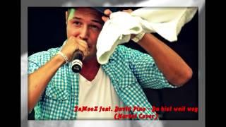 FaMooZ feat. David Pino - Du bist weit weg (Herbst Cover)