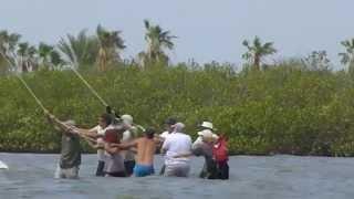 2014 Hurricane Odile Refloating Boats (Music added)