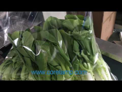 Leaf Vegetable Packing Machine-Coretamp