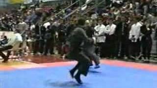 Mantis vs Snake (Fabio-Stefano)