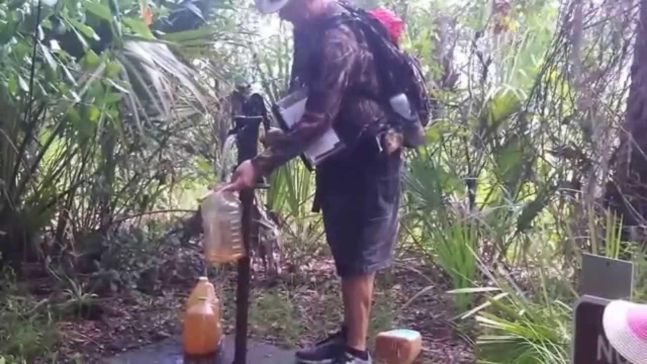 Myakka River State Park Sarasota Florida. Hiking Tree Canopy Walk - YouTube & Myakka River State Park Sarasota Florida. Hiking Tree Canopy ...