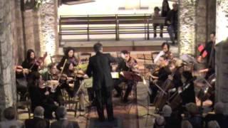 Mozart Eine kleine Nachtmusik, Jean-François Gonzales-Hamilton