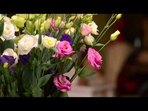 Доставка свежих цветов по России Заказ цветов с доставкойиз YouTube · С высокой четкостью · Длительность: 3 мин57 с  · Просмотров: 337 · отправлено: 10.05.2017 · кем отправлено: Путешествия по миру прекрасного
