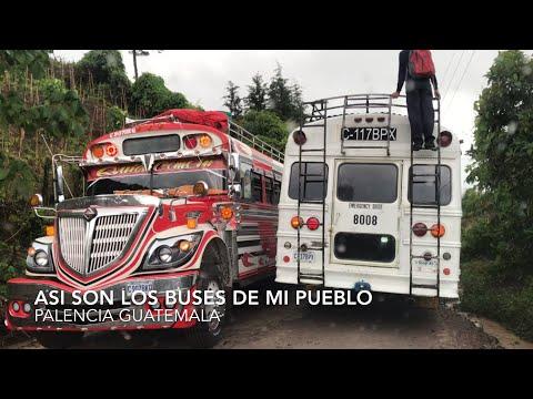 Asi lucen los buses o camionetas de Mi Pueblo Palencia guatemala 🇬🇹
