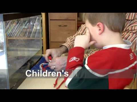 Children's House Work Time in Two Different Rooms   Bluffview Montessori School