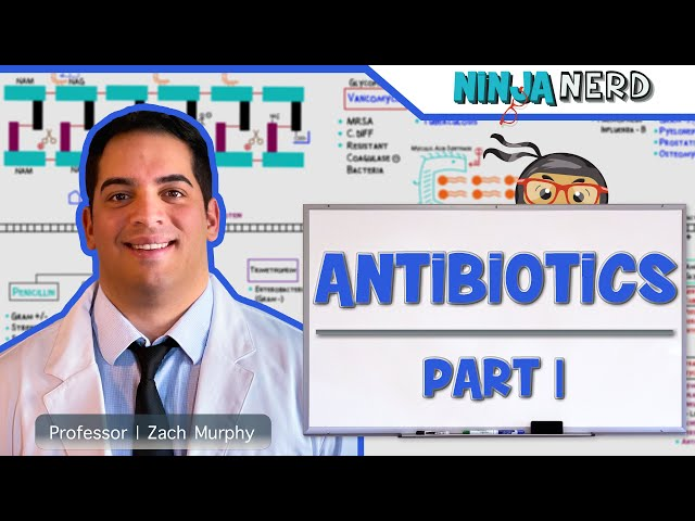 Antibiotics: Cell Wall Synthesis Inhibitors | Part 1