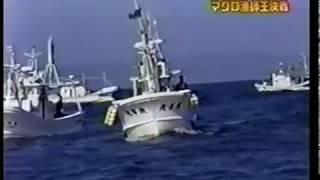 TVチャンピオン マグロ漁師王選手権 津軽海峡一本釣り決戦