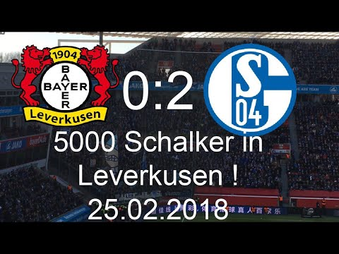 Bayer Schalke