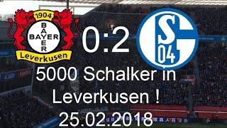 Stimmungsvideo Bayer Leverkusen - Schalke 04 (0:2)|25.02.2018| 5000 Schalker rocken Leverkusen