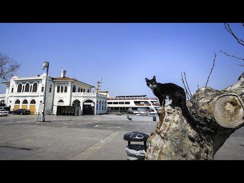 Video   Türkiye'de sokağa çıkma yasağı: Öncesi ve sonrasında yaşananlar