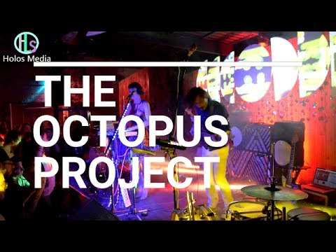 The Octopus Project interview - Holos Media