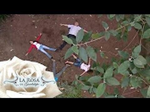 El amigo de los árboles | La Rosa de Guadalupe