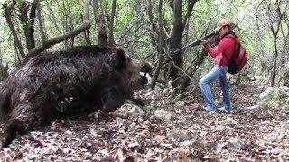 Топ 5 невероятных везений в охоте на КАБАНОВ
