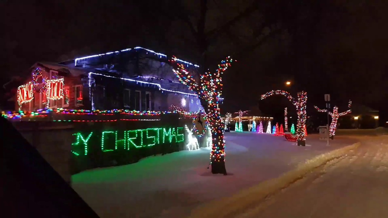 christmas lights polar bear lane